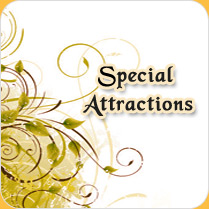 special attractions